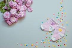 Calcetines y flores del crisantemo sobre fondo gris Imagen de archivo libre de regalías