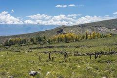 Calchaqui谷在土库曼,阿根廷 免版税库存图片