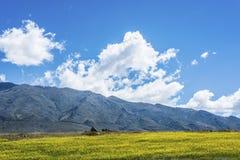 Calchaqui Valley in Tucuman, Argentina Stock Photos