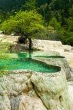 Calcification Ponds At Huanglong, Sichuan, China Stock Photos