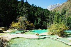 Calcified Ponds in Huanglong Royalty Free Stock Photo