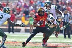 2015 calcio del NCAA - USF @ Maryland Immagini Stock Libere da Diritti