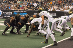 Calcio dell'arena dell'Arizona Rattlers Immagine Stock Libera da Diritti