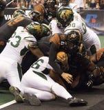 Calcio dell'arena dell'Arizona Rattlers Fotografie Stock
