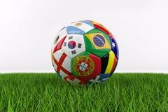 Calcio della coppa del Mondo su erba Immagini Stock Libere da Diritti