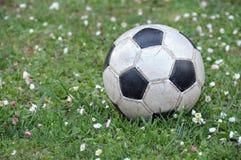 calcio della sfera Immagine Stock Libera da Diritti