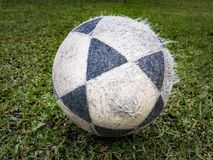 Calcio nell'erba immagine stock