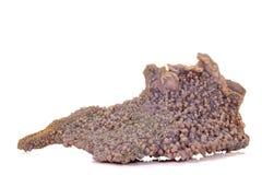 Calcita de piedra macra del cobalto mineral en el fondo blanco foto de archivo libre de regalías
