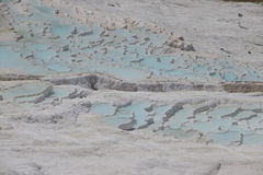 Calcium deposits  on travertine terraces Royalty Free Stock Photography