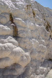 Calcium deposits   travertine Royalty Free Stock Photography