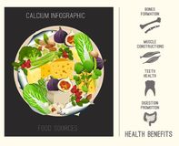 Calcium in Food. Beautiful vector illustration in modern style with infographic elements. Nutritional and dietary concept with health benefits information. Top Stock Photos