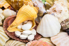 Calcium natural food supplement pills on the beautiful seashells background Stock Photos