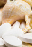 Calcium natural food supplement pills on the seashells background, macro shot, selective focus Stock Images