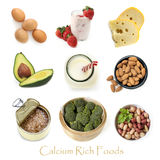 Calcium Rich Foods Isolated on White. Collection of calcium rich foods isolated on white Royalty Free Stock Photography