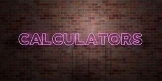 CALCOLATORI - segno fluorescente del tubo al neon su muratura - vista frontale - 3D ha reso l'immagine di riserva libera della so illustrazione vettoriale