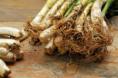 Calcots, catalan sweet onions Royalty Free Stock Image