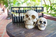 Calcul de crâne Photographie stock