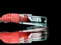 Calcul - fil de sortie rouge de correction de réseau d'isolement Photo stock