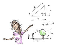 Calculate the height of a tree Stock Photography
