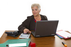 Calculating female senior with laptop Royalty Free Stock Photos