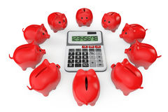 Calculating Savings Concept. Piggy Banks with calculator Stock Images