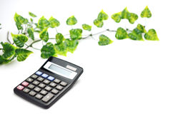 Calculator and leaf Stock Photo