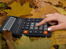 The calculator on leaves. The picture represents a hand considers on the calculator on autumn leaves Stock Photos