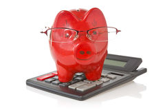 Calculator and piggy-bank Royalty Free Stock Photos