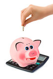 Calculator, piggy bank and hand with coin Stock Image