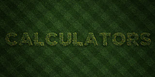 CALCULATORS - fresh Grass letters with flowers and dandelions - 3D rendered royalty free stock image Stock Photo
