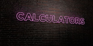 CALCULATORS -Realistic Neon Sign on Brick Wall background - 3D rendered royalty free stock image Royalty Free Stock Image