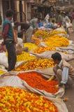 calcutta blommamarknad Arkivbilder