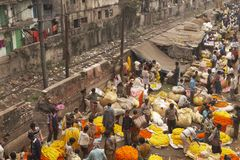 Calcutta Flower Market Royalty Free Stock Image