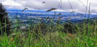 Caldas Колумбия стоковая фотография rf