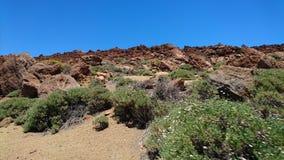Caldeira de Teide Ténérife Photos stock