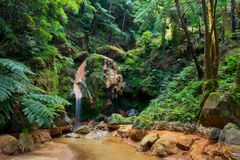 Small river flowing in a gorge, Caldeira Velha, Sao Miguel Island, Azores, Portugal stock photo
