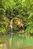 Caldeira Velha hot waterfall Royalty Free Stock Image