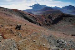 Caldera av den Haleakala vulkan i den Maui ön Arkivbilder