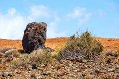 Caldera av vulkan för El Teide, Tenerife, Spanien arkivfoton