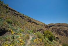 Caldera de Bandama. Hiking trail royalty free stock photos