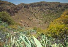 Caldera de Bandama. Volcanic caldera, Inland Gran Canaria stock image