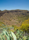Caldera de Bandama. Volcanic caldera, Inland Gran Canaria royalty free stock images