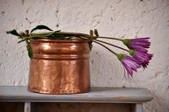 caldera de cobre con tres flores fucsias Foto de archivo libre de regalías