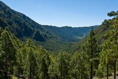 Caldera de Taburiente,  La Palma island Royalty Free Stock Images