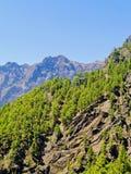 Caldera de Taburiente National Park on La Palma Royalty Free Stock Photography