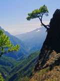Caldera de Taburiente National Park on La Palma Stock Photos