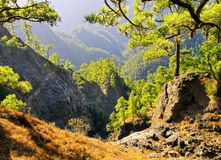 Caldera de Taburiente National Park on La Palma Royalty Free Stock Images