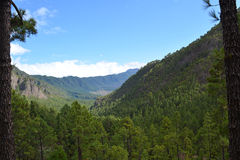 Caldera de Taburiente no La Palma, Ilhas Canárias, Spain Foto de Stock