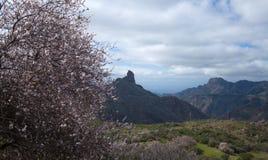 Caldera de Tejeda i vinter arkivbild
