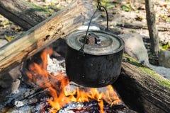 Caldera en el fuego en bosque Fotos de archivo